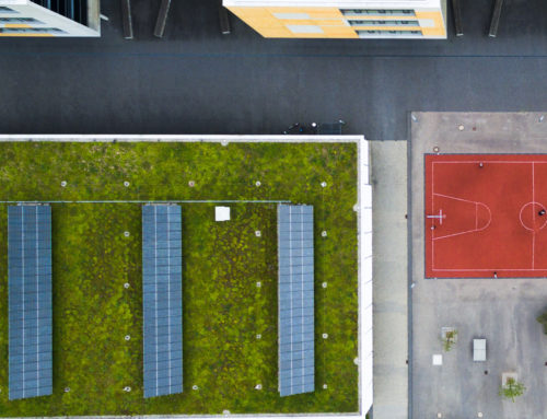 6 Up-and-Coming Green Initiatives for Commercial Buildings
